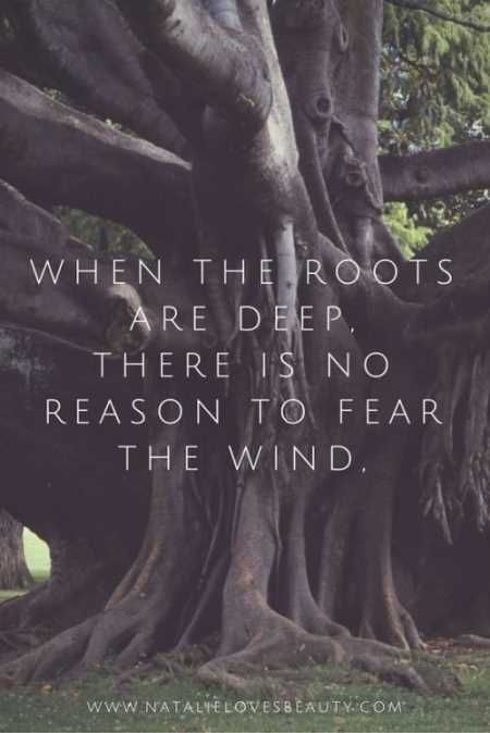 Image of: Quotes Inspirational As The Quote Says Description Soloquotes Inspirational And Motivational Quotes 35 Powerful Inspirational